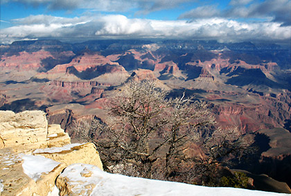 the Grand Canyon viewed from Yavapai Point