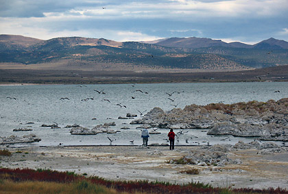 view of Mono Lake's western shore from Highway 395
