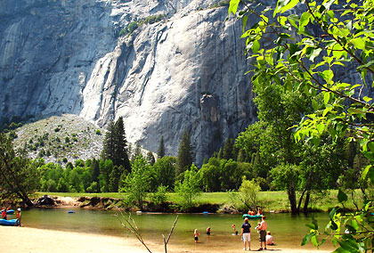 meadow scene by the Merced River, Yosemite Valley