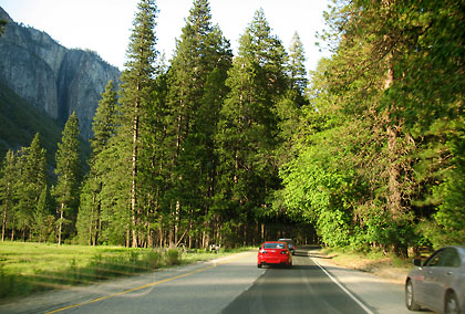 road in Yosemite Valley