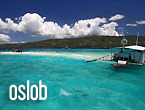Sumilon Island Sandbar