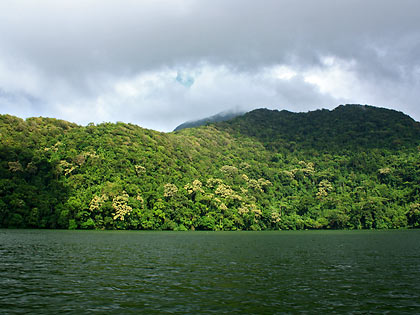 rainforest around Bulusan Lake with Mt. Bulusan in the background