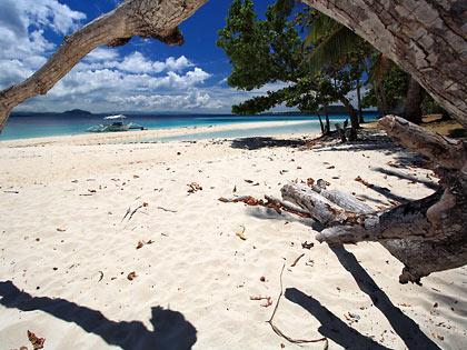 dead tree at Mahaba Island