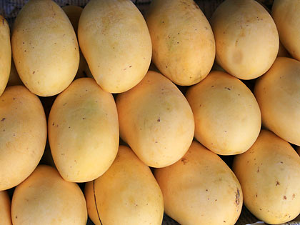 mangoes at a fruit stall in Jordan town