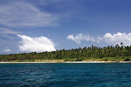 white sand beach and coconut palms on Higatangan Island's southern shore, Biliran