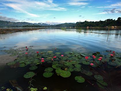 Lake sebu beauty with altitude shoestring travelers morning view of lake sebu thecheapjerseys Gallery