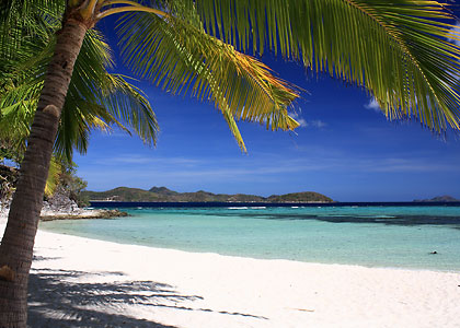 coconut palms on white sand beach, Malcapuya Island, Coron, Palawan