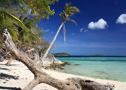 driftwood on white sand beach, Malcapuya Island