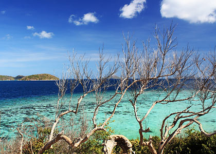 view of coral-rich waters in front of Malcapuya's southern beach
