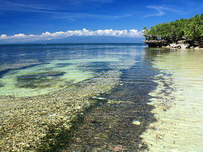 corals and sea grass at Paliton Beach