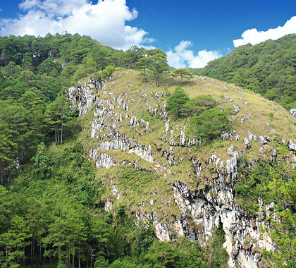 limestone or karst formation on one of the hillsides in Sagada