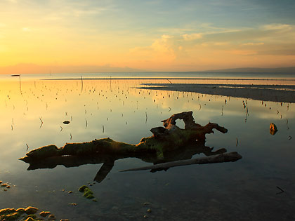 driftwood at sunset, Sandugan Beach