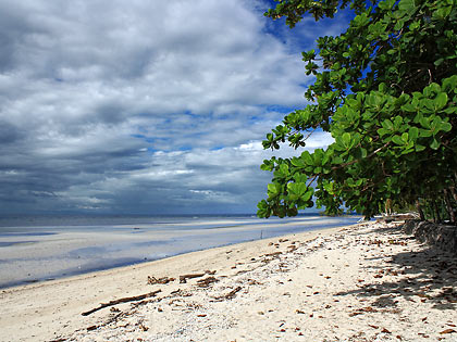 Sandugan Beach front at Kiwi Dive Resort, Larena