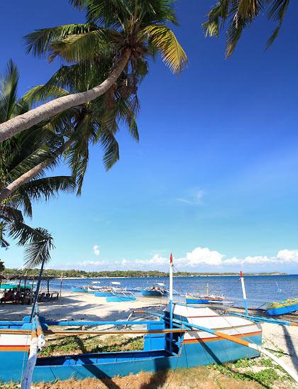 boats and coconut palms at Tambobong Beach
